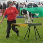 Dog Agility Team